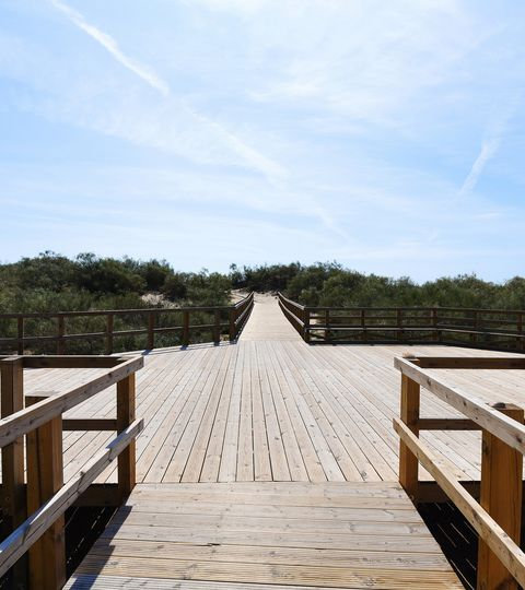 Terms and Conditions- Praia da Lota Resort - Algarve